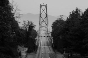 gråskalefotografering av hängbro