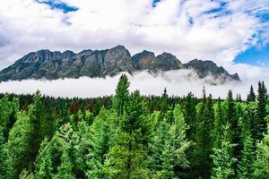 berg täckt med dimma