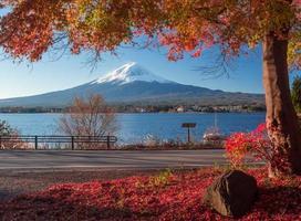 mt. fuji och höstlövverk vid sjön kawaguchi. foto