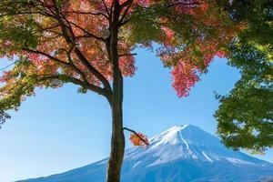vacker mt. fuji från en kawaguchiko sjö foto