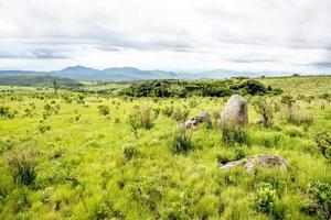 nyika-platån i malawi foto