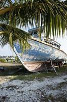 gamla färgglada skeppsbrott, Maldiverna.
