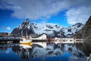 vårsolnedgång - Reine, Lofoten, Norge