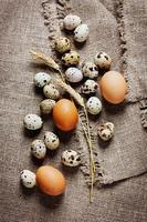 vaktelägg och kycklingägg på en rustik bakgrund foto