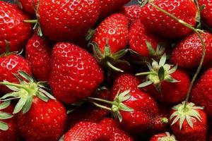handfull jordgubbar på skiffer foto
