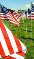 amerikanska flaggor foto