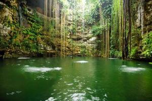 ik-kil cenote nära Chichen Itza foto