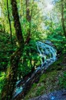 kio mae pan vattenfall foto