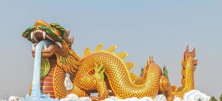 stor gyllene drake. foto