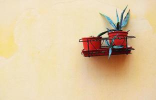 aloeväxter i röda krukor på gul stuckaturvägg foto