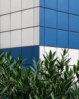 blå och vita brickor