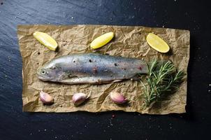 rå öring fisk mörk bakgrund foto