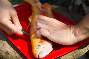 man förparar fisken