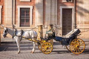 hästvagn i Sevilla, Andalusien, Spanien