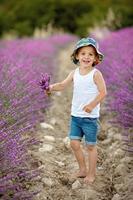 bedårande söt pojke med en hatt i lavendelfält foto