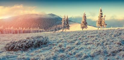 vacker vintersoluppgång i bergen.
