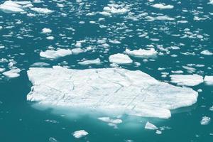 isberg från Tracy Arm Fjord i Alaska