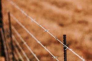 närbild av ett taggtrådsstaket. foto