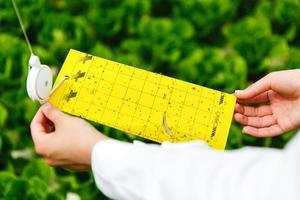 forskaren tar ett test av insekter i ett växthus