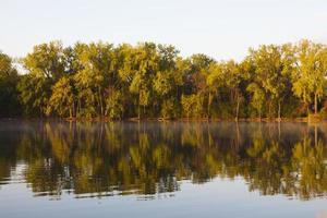 landskap med träd och dimma som reflekterar i cederträsjön foto