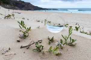lensball på en strand under dagen