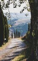 väg genom landsbygden
