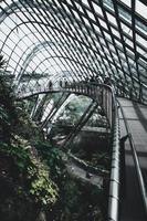 Shanghai, Kina, 2020 - människor som utforskar en botanisk trädgård foto