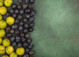 diverse plommon på en grön bakgrund med kopieringsutrymme foto