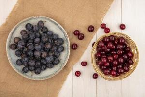 ovanifrån av små sura blå-svarta fruktslower