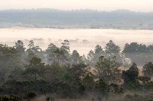 dimmig morgonsoluppgång