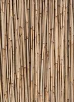 närbild av bambupinnar