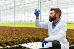 forskaren tar vatten i ett provrör som sitter i ett växthus