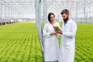två forskare samlar in data i ett växthus