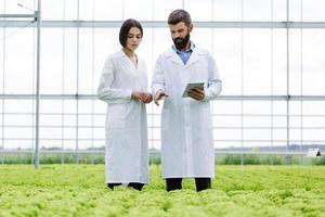 forskare som diskuterar växthuset