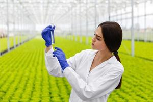 kvinnlig forskare håller ett glasrör med ett prov