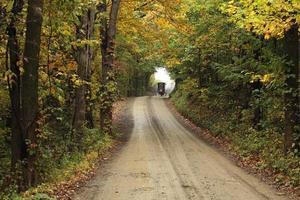 häst och vagn i fjärran på en grusväg