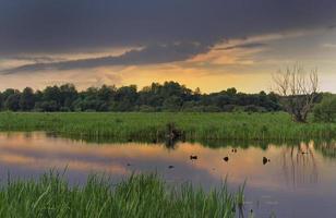 vacker sommarmorgon på floden