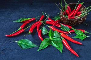 röd chilipeppar foto