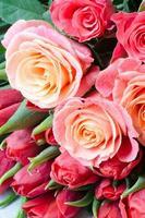 massa rosor och tulpaner foto