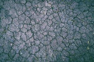 torkad grå yta täckt med flera sprickor foto
