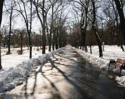 parkera gångväg på vintern foto
