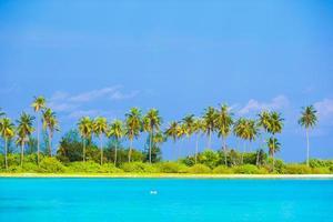 tropisk strand på dagtid