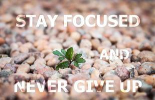 håll fokus och ge aldrig upp inspirerande citat foto