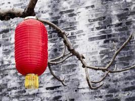 kinesisk lykta som hänger på ett träd foto