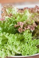 närbild av gröna salladsblad