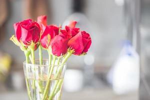 bukett med blommande röda rosor i vas foto