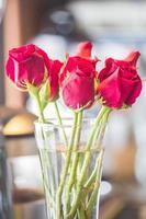 röda rosor i en vas foto