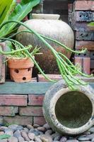 trädgård dekorerad med lerkrukor