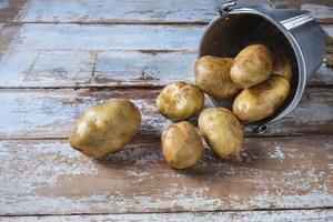 potatis i en hink foto