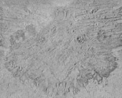 betongvägg konsistens